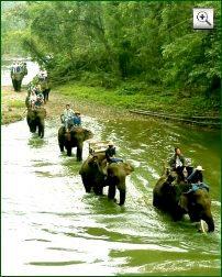 Bild: Chiang Mai Elefant Trekking (Thailand)