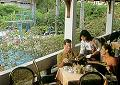 Amari Rincome Hotel Chiangmai