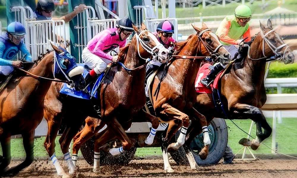 Beliebt in Bangkok - Wetten beim Pferderennen