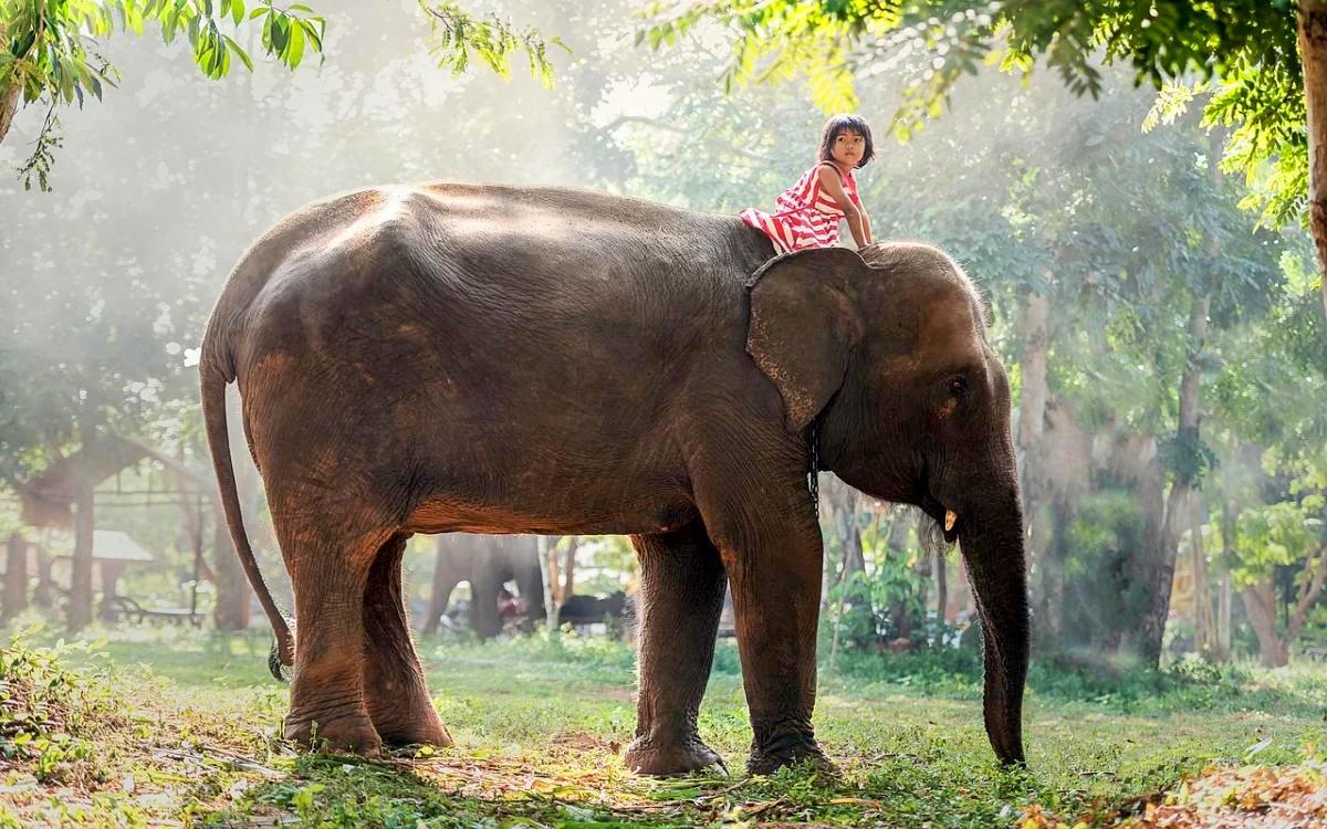 Thailand Urlaubsplanung - Was ist die beste Reisezeit?
