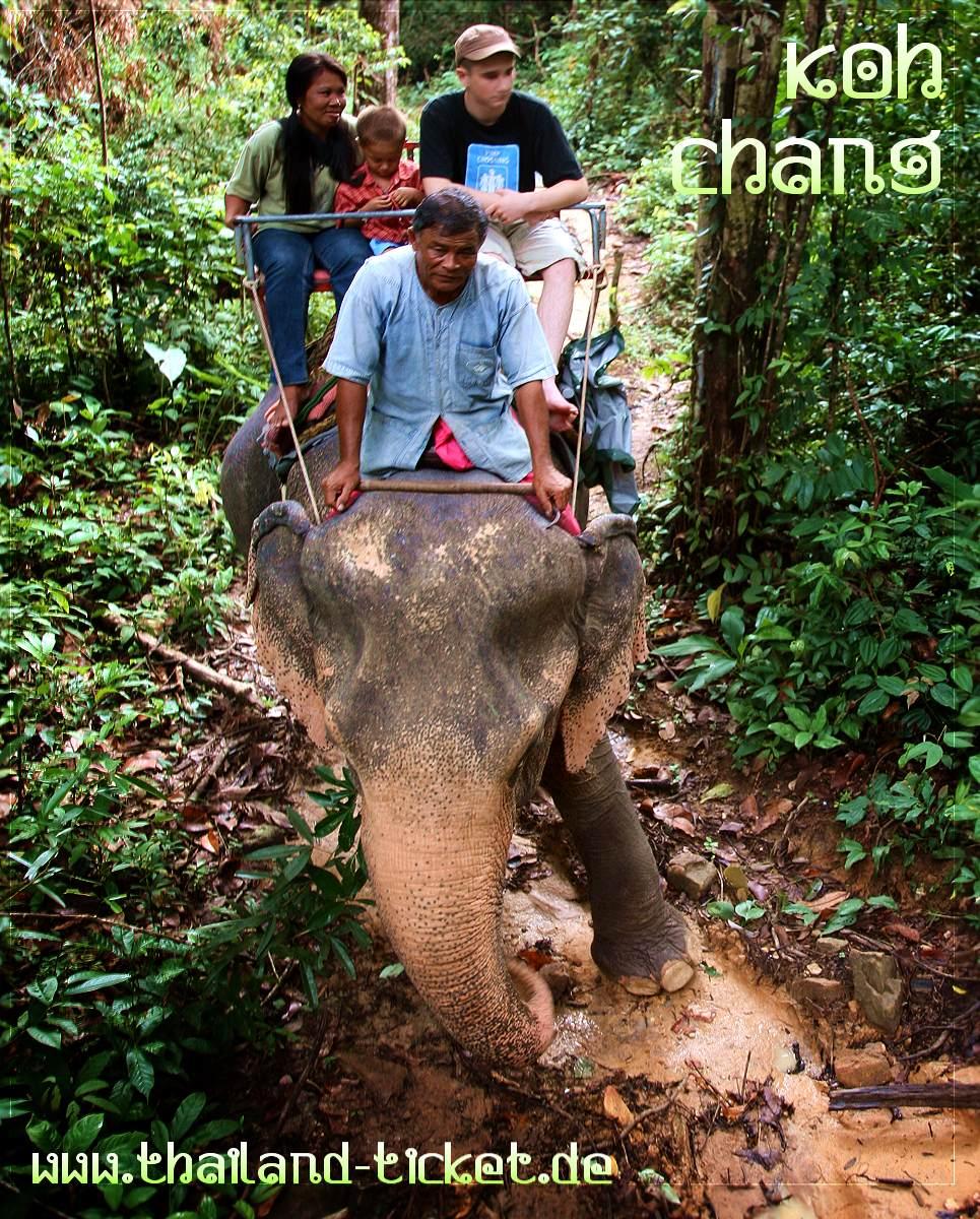 Koh Chang: Elefantenreiten in Thailand