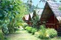 Foto: Central Cottage Hotel (Koh Phangan/Thailand)