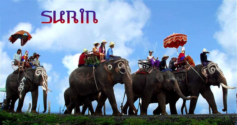 Foto: Elefant Show Surin